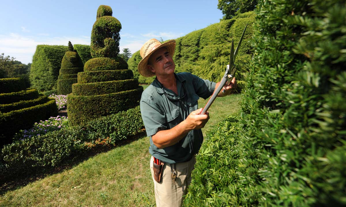 Jardineria profesional madrid