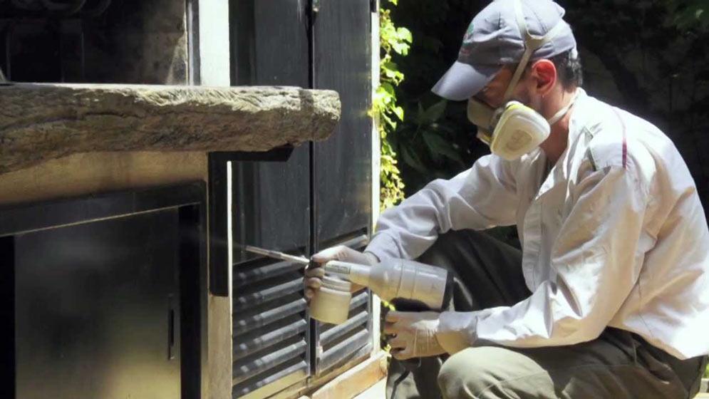 mantenimiento de comunidades control plagas