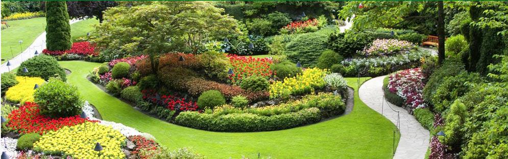 mantenimiento de comunidades jardín