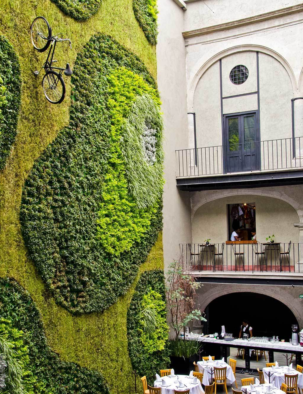Jardines verticales mexico